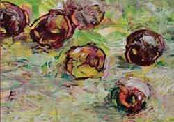 The cover to Pomegranate Garden by Haydar Ergülen