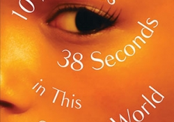 The cover to 10 Minutes 38 Seconds in This Strange World by Elif Shafak