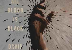 The cover to At Night All Blood Is Black by David Diop