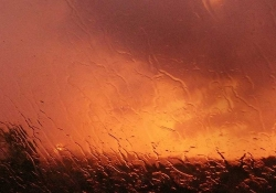 A photograph of an orange hued landscape as seen through a rain-swept window