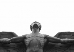 A photograph of a winged figure looking upward into a perfectly white sky
