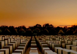 Numerous uniformly cube shaped objects serving as memorials in a field bathed in the colors of sunset