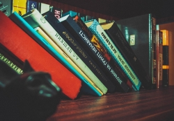 Books leaning on a shelf