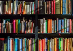 Colorful books on a bookshelf