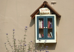 Small outdoor library box with books in English and Spanish