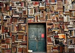 A wall of books with a blue door.