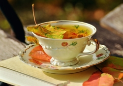 Book with a cup tea and fall leaves