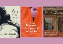 The covers to three of the 75 Notable Translations of 2020 juxtaposed against a boysenberry colored background