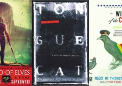 The covers to three books from the fantasy in translation list