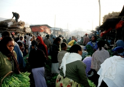 The Mercato in Addis where Moskowitz did much of her work in Ethiopia.